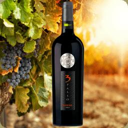 Vino Orgánico Passo 3 Rosso, Ekuó, Cosecha 2015, Caja con 6 botellas de 750ml